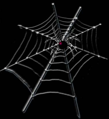Wicked Webs Creative Web Design & Development Darwin Northern Territory Australia